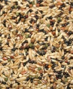 Countrywide Canary breeder with VAM pellets