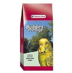 Budgies