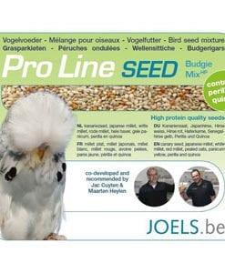 Joels Pro Line Budgie