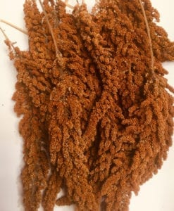 Treats & Millet