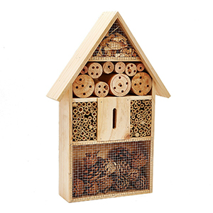 pet ting insect hotel